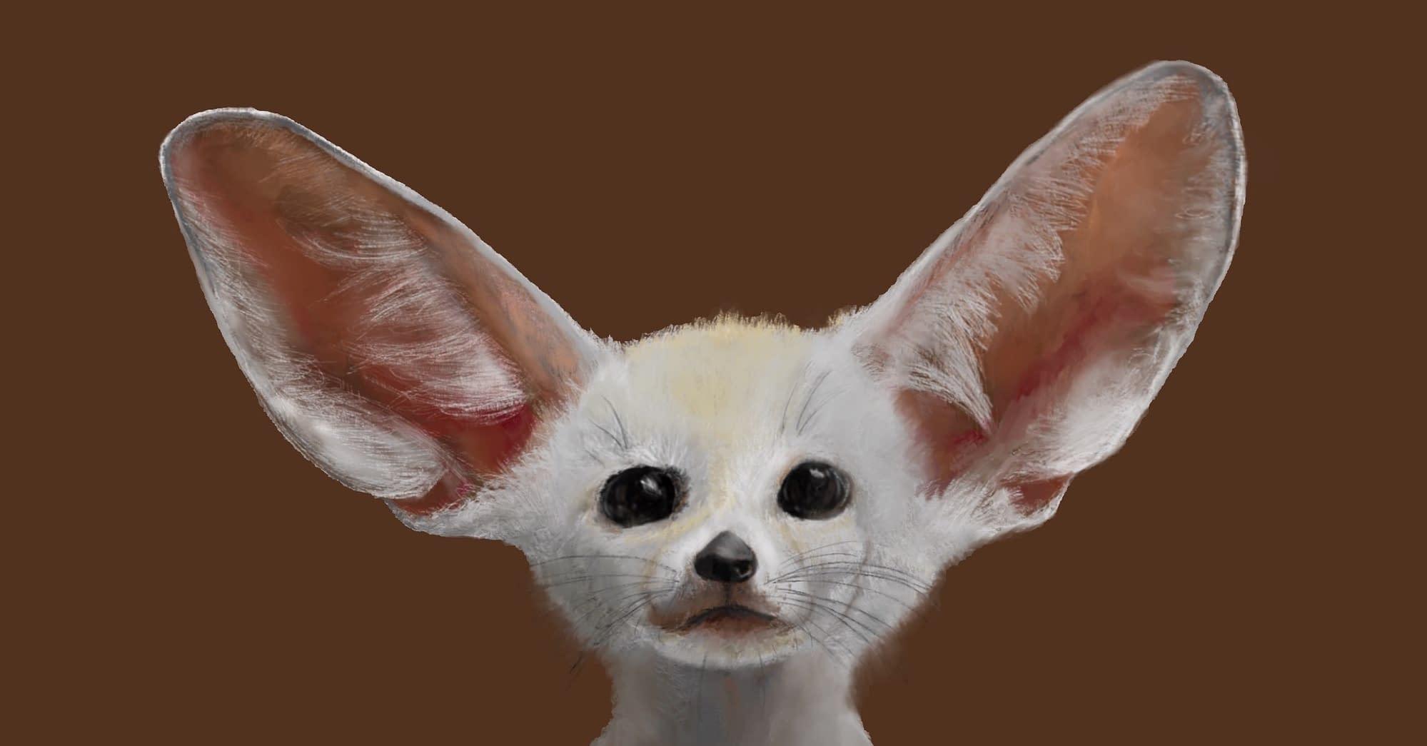 Fennec fox - Artwork - Untraced digital portrait of a fennec fox drawn from scratch in Procreate on iPad Pro. Part of a series I'm planning of digitally-drawn exotic/beautiful animal species'.